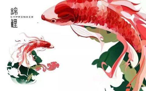 2020年,做一条属于自己的专属锦鲤,让好运来得更猛烈些吧!37套锦鲤风格PPT模板下载!