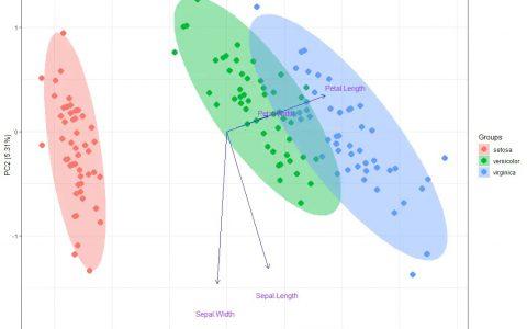 R语言主成分分析(PCA)加置信椭圆